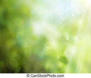 printemps, fond, nature, résumé