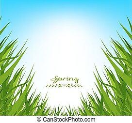 printemps, herbe, fond, frais