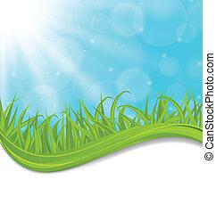 printemps, herbe, naturel, vert, carte