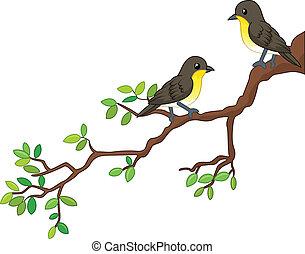 printemps, oiseaux, deux, branche, chanson