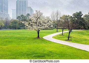 printemps, parc ville