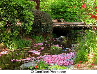 printemps, rivière