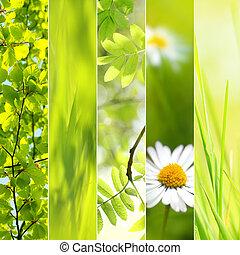 printemps, saisonnier, collage