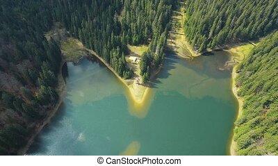 prise vue aérienne, forêt lac