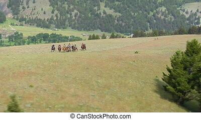 prise vue aérienne, mountaintop, cowboys