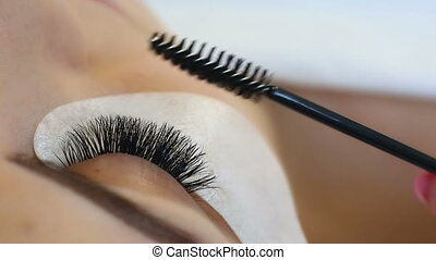 procedure., haut, oeil femme, eyelashes., extension, cil, mèches, long, foyer., sélectif, macro, fin