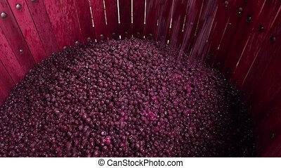 processus, fermentation, pendant, baril, vin, mélange