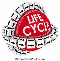 produit, envergure, processus, vie, système, diagramme, temps, lifecycle, cycle