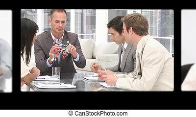 professionnels, échanger, montage