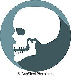 profil, plat, crâne humain, icône