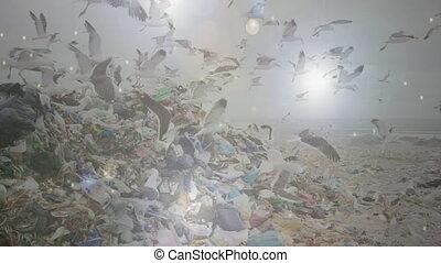 projecteurs, disposition, gaspillage, sur, oiseaux, animation, voler, site