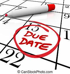 projet, entouré, date, grossesse, dû, calendrier, ou, achèvement