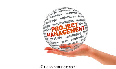 projet, sphère, gestion, mot