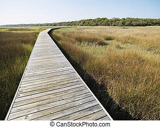 promenade, marsh.