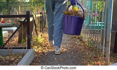 promenades, femme, sec, vue., entre, tombes, arrière, seau, feuilles, recueilli