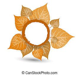 propre, background-autumn, feuilles, automne, conception, tomber, ton
