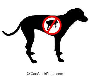 puce, chien, prohibition, signe