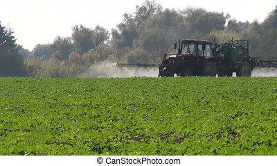 pulvérisation, tracteur, récolte, champ