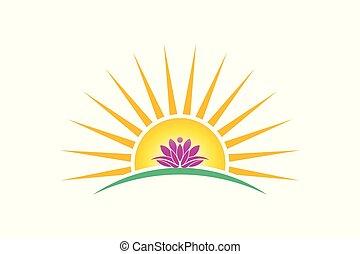 pureté, logo, plante, lotus, personne, concept, levers de soleil, vecteur, image.