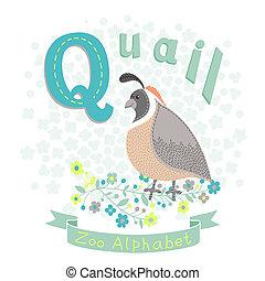 q, caille, -, lettre