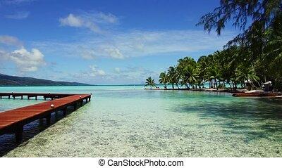 quai bois, polynésie française, plage tropicale