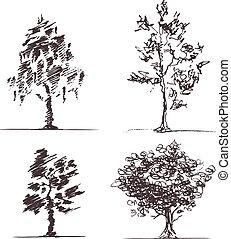 quatre, croquis, ensemble, arbres