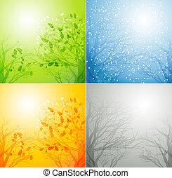quatre saisons, différent, arbre