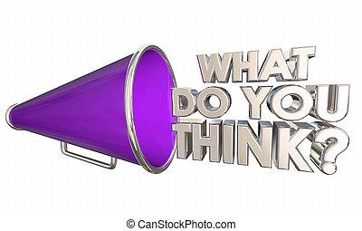 quel, question, illustration, bullhorn, mots, vous, porte voix, penser, 3d