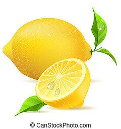 réaliste, feuilles, citron, moitié