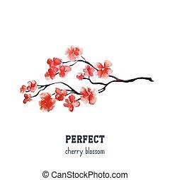 réaliste, fleur, arbre, -, japonaise, isolé, arrière-plan., sakura, cerise, blanc rouge