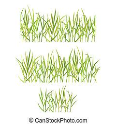 réaliste, herbe, vert