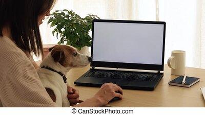 récolte, ordinateur portable, travailleur indépendant, utilisation, chien