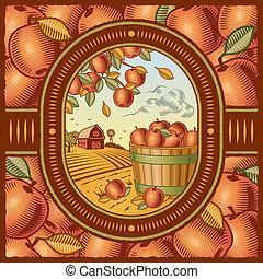 récolte, pomme