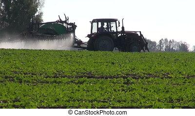 récolte, pulvérisation, tracteur, rapeseed, champ
