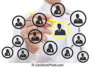 réseau, social, interface