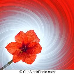 résumé, fleur, arrière-plan rouge