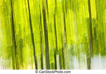 résumé, forêt verte, fond