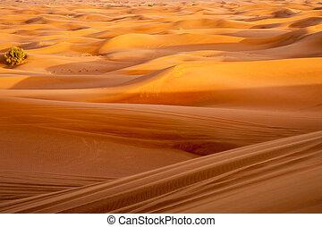 résumé, sable, fond, vagues
