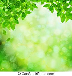résumé vert, naturel, fond