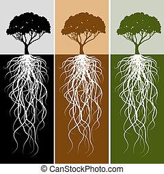 racine, ensemble, bannière, vertical, arbre