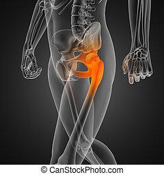 radiographie, humain, balayage