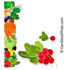 radis, légumes