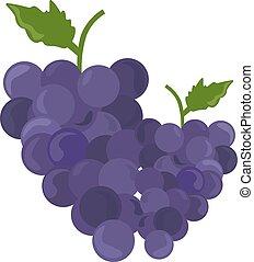 raisins, illustration, blanc, vecteur, arrière-plan.