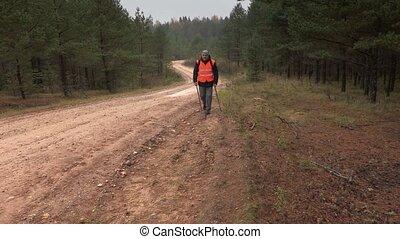 randonneur, route, polonais, forêt, randonnée