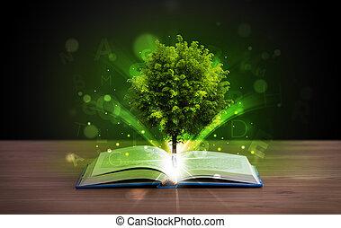 rayons, lumière, arbre, magique, livre, vert, ouvert