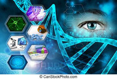 recherche, science médicale, scientifique