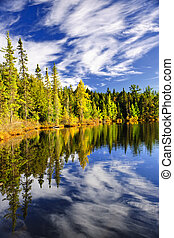 refléter, ciel, forêt lac