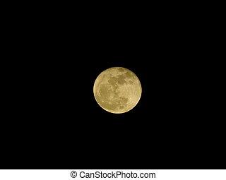 reflet, clair, cratères, sunlight., lune, night.