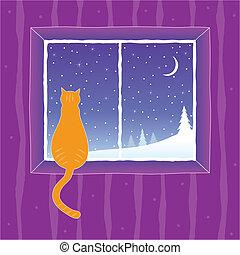 regarder, fenêtre, chat