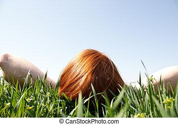 regarder, roux, herbe, pose, haut